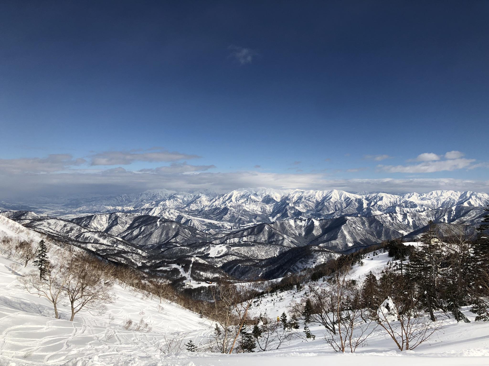 1月・2月のスケジュール変更 〜スノーボード 18-19 Seasons〜【西荻窪・パーソナルトレーニング】