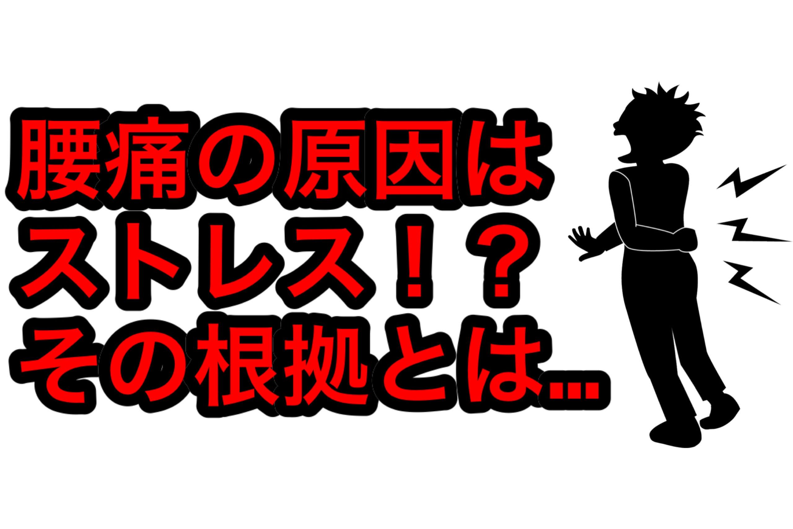 腰痛とストレス①【西荻窪・パーソナルトレーニング】